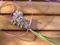 Lavendel_Staebe03