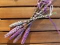 Lavendel_Staebe08