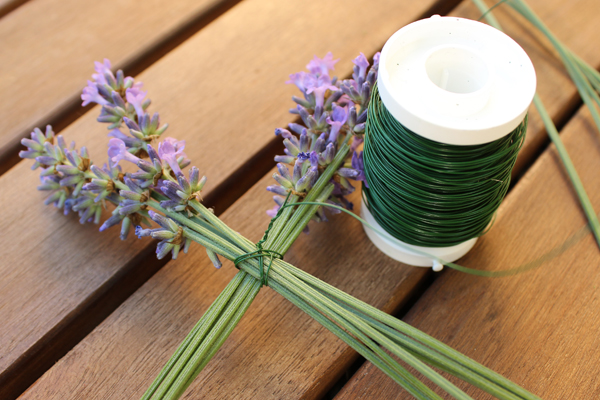 Lavendel_Stern05