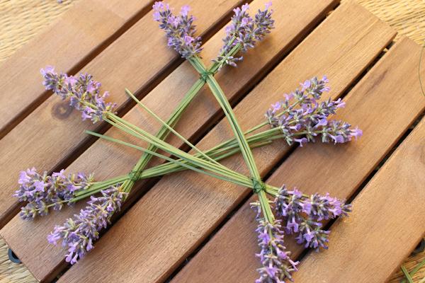 Lavendel_Stern07