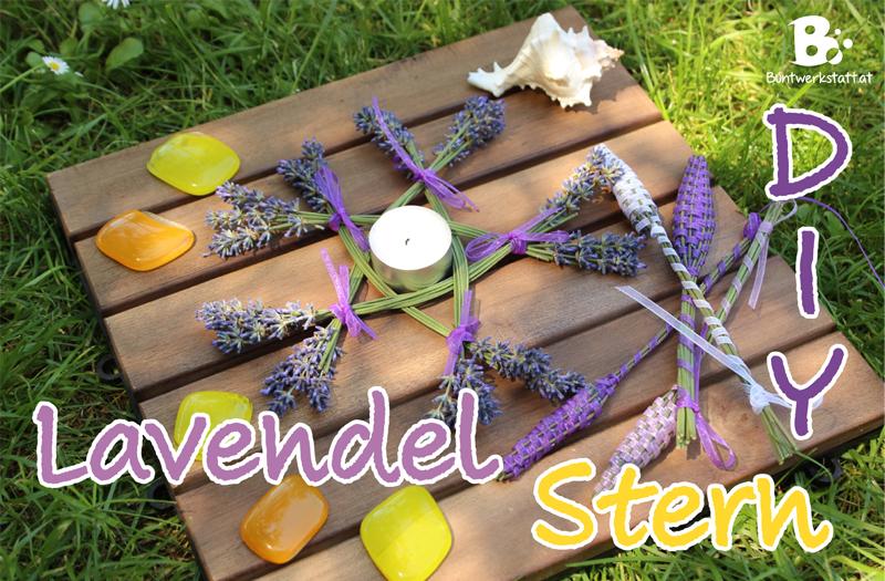 lavendel_stern