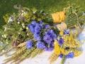 Wiesenblumen21